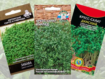 Кресс салаты посевные