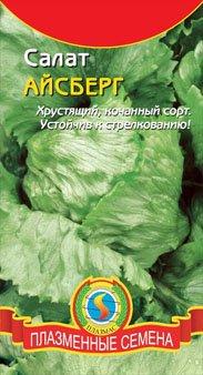 листовой салат айсберг