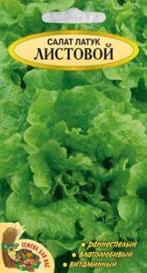 листовой салат латук