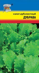 листовой салат дуболистный