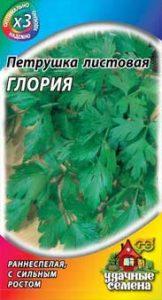 петрушка листовая глория
