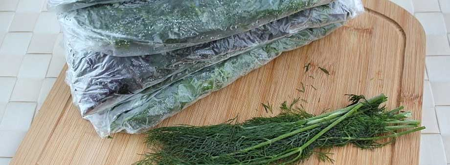 заморозка зелени целыми веточками