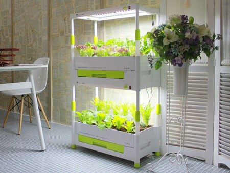 Домашний огород Солнечный сад
