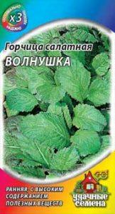 листовая горчица волнушка