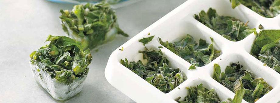 микрозелень в медицине