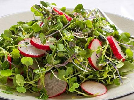 микрозелень в салате