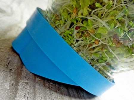 проращивание микрозелени при помощи крышки сито