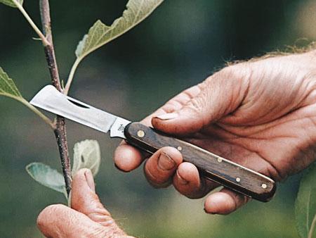 садовый нож для прививок