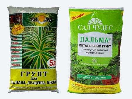 Грунт для пальм