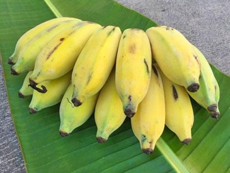 Банан Яблочный