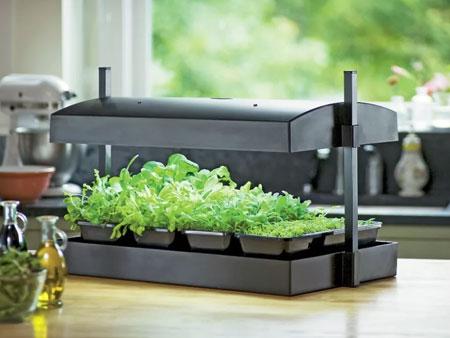 Фитолампа для выращивания зелени