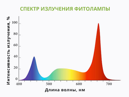 Спектр излучения фитолампы