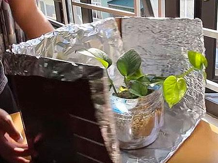 Подсветка для растений из фольги